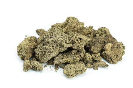 dry cow: Pile of dry cow manure isolated on white background Stock Photo