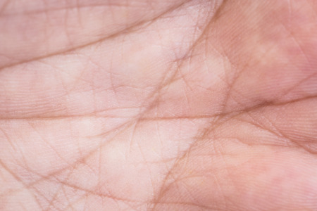 human skin texture: Macro Hand skin texture