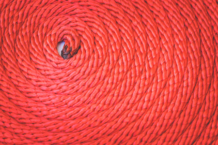 nylon string: Macro Texture of red rope