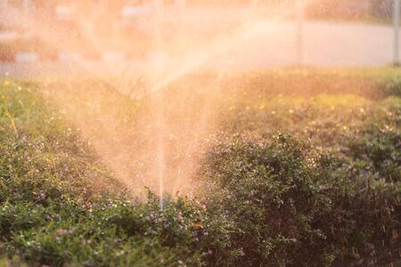 sprinkle system: Close up sprinkler and watering in the garden