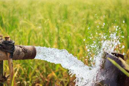 water flow: Water flow from large pump tube in rice field in central of Thailand, Focus on tube