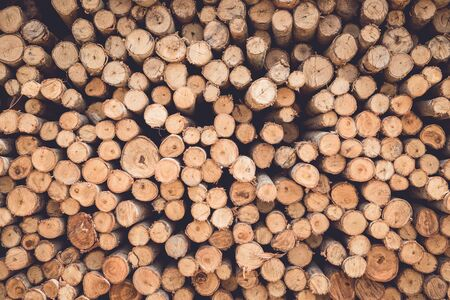 lumbering: Stacked of wood log  for construction buildings background and texture Stock Photo
