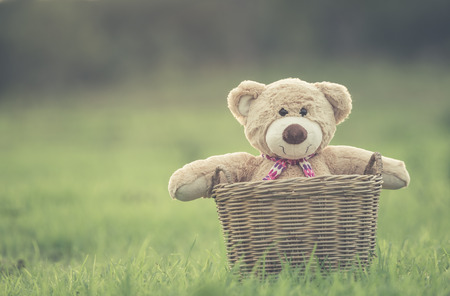 tiny lenses: Close up lovely brown teddy bear in rattan basket on green field with lens flare. Warm toning effect. Retro and vintage style Stock Photo