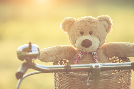 tiny lenses: Close up lovely brown teddy bear in rattan basket on red vintage bike in green field with lens flare. Warm toning effect. Retro and vintage style Stock Photo