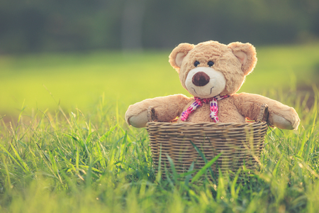flare up: Close up lovely brown teddy bear in rattan basket on green field with lens flare. Warm toning effect. Retro and vintage style Stock Photo