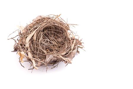 Close up old empty bird nest isolated on white background