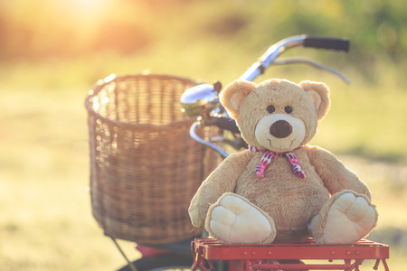 tiny lenses: Close up lovely brown teddy bear in rattan basket on vintage bike in green field with lens flare. Warm toning effect. Retro and vintage style