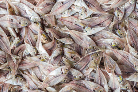 filleting: Top view stack of fish skeleton after filleting. Food background Stock Photo