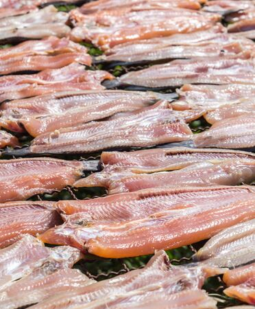 common snakehead: New fish dried under the sun, Striped snakehead fish dried prepare for cook in Thailand