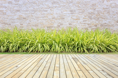 decking: Old hardwood decking or flooring and plant in garden decorative
