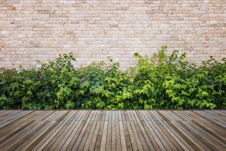 Oude hardhouten vloeren of vloeren en plant in de tuin decoratieve