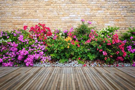 Old hardwood decking or flooring and plant in garden decorative Reklamní fotografie - 61848388