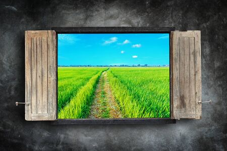 windows frame: Old wooden windows frame on stone wall and view of green field