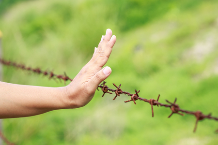 invade: Close up hands hanging on old metal rusty barbed wire