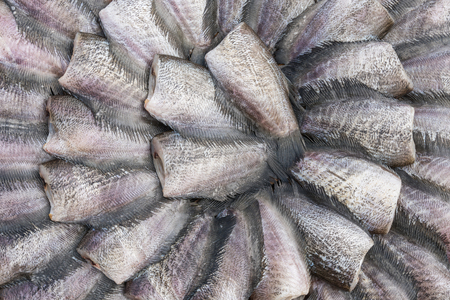 common snakehead: New fish dried under the sun prepare for cook in in market, Thailand