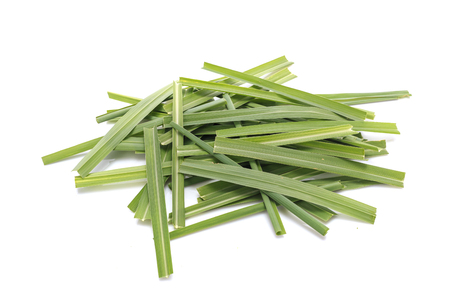 Green Lemongrass or citronella grass leaf. Studio shot isolated on white background