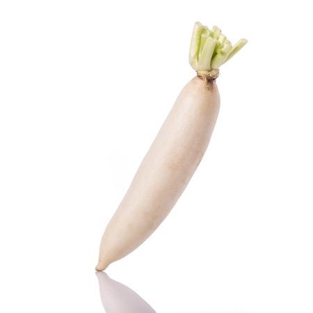 Fresh white radish. Studio shot isolated on white background