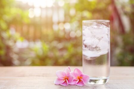 Close up glass of cold water with ice and pink plumeria flower on table with blur nature garden background