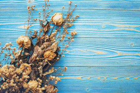 Dry brown flower for interior decoration on bright blue wooden