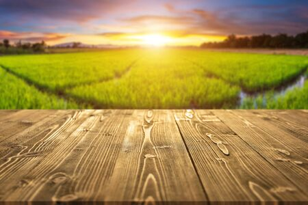 Empty wooden board or table with abstract blurred of rice field in sunset time