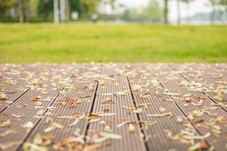 Empty wooden floor or decking with abstract blurred of garden background. For Display or product photo montage