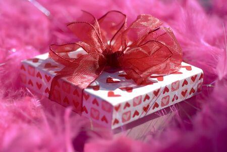 feather boa: A giftbox