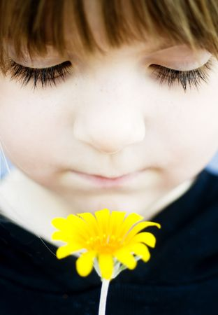 Young child smelling a fresh wildflower Stock Photo - 4500522