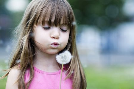Little girl blowing a wild flower photo
