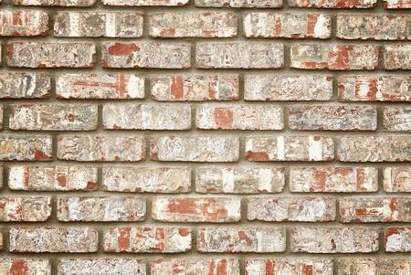 paredes de ladrillos: De pared imitación de ladrillo rústico