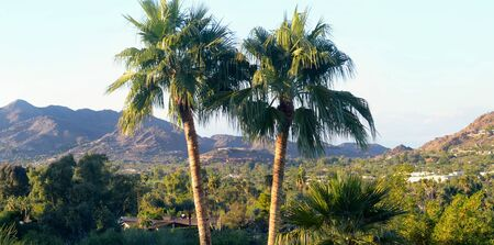 Paradise Valley en Phoenix, AZ photo