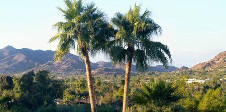 Paradise Valley in Phoenix, AZ
