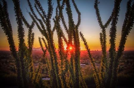 Arizona sunset over Phoenix, AZ photo