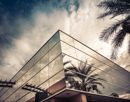 Modern office building with palm tree reflecting in glass photo