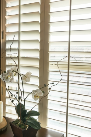 a blind: Plantation style wood shutters