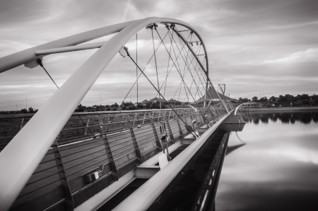 ave fenix: Puente colgante Tempe Town Lake, Arizona