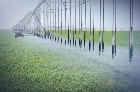 agriculture machinery: Farm s crop being watered by sprinkler irrigation system Stock Photo