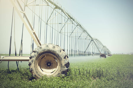 Farm s crop being watered by sprinkler irrigation system photo