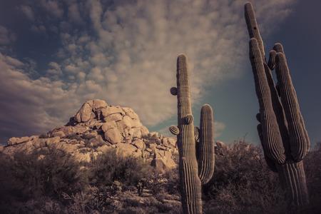 scottsdale: Desert landscape mountains dramatic sky, Scottsdale,Arizona