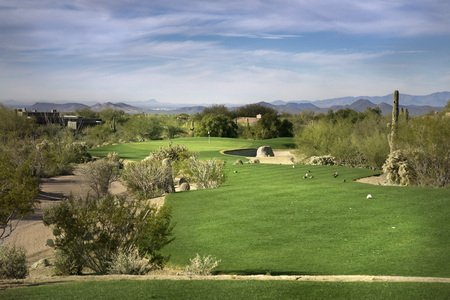 Desert golf course fairway