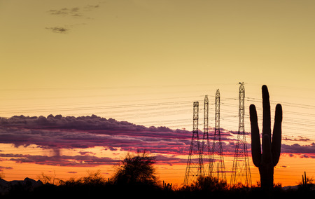 electric grid: Electricity power supply concept image for dry west desert regions of USA. Saguaro tree in foreground with power lines silhouetted against dramatic late evening sunset. Stock Photo
