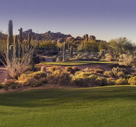 Prachtige woestijn tee shot golfbaan Stockfoto