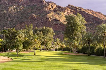 Oase in de woestijn golfbaan - Phoenix, AZ Stockfoto
