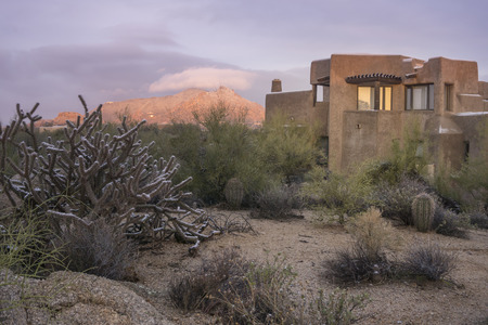 사막 xeriscape 새로운 가정 산 배경, 애리조나, 미국 디자인