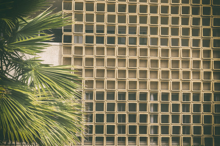 Mid Century  Modern theme background  classic Californian Style  brick wall texture and palm trees. Foto de archivo