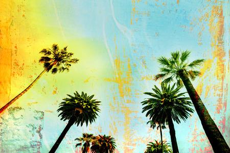 캘리포니아 서핑 팜 트리 배경