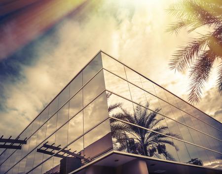 Modern kantoorgebouw met palmboom weerspiegelt in glazen