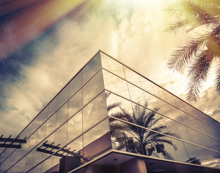 building exteriors: Modern office building with palm tree reflecting in glass