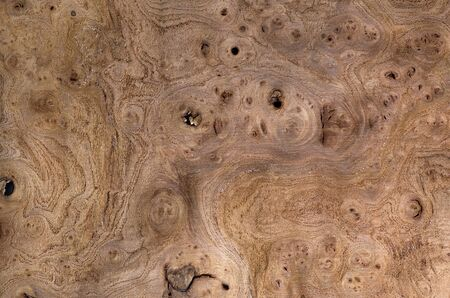 veneer: Exotic venner wood grain for textures and layering