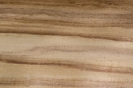 wood textures: Exotic venner wood grain for textures and layering