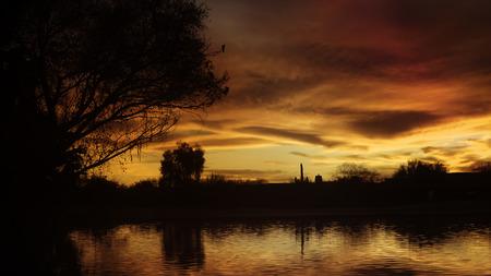 Woestijn meer zonsondergang met vogel wildlife